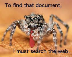 Sad Spider Meme - funny jumping spiders jumping best of the funny meme