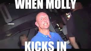 when molly kicks in watch or download downvids net