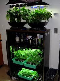 indoor vertical herb garden in the kitchen reclaim grow sustain 17