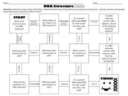 dna structure maze worksheet for review or assessment by science