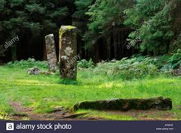 prehistoric megalithic standing stones in a forest glade above