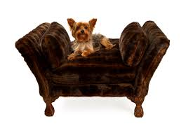Cheap Dog Beds For Sale Bedroom Marvelous Unique Luxury Dog Bed Related Items Fancy Beds