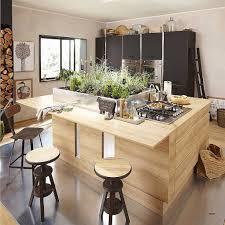 comment faire partir des moucherons dans une cuisine le plus confortable moucherons appartement nicoleinternationalfineart