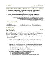 marketing manager resume digital marketing manager free resume sles blue sky resumes
