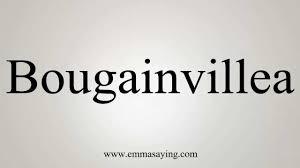 how to pronounce bougainvillea youtube