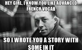 learn french with camus a 20 word advanced vocabulary list from l