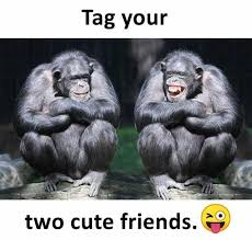Cute Friend Memes - dopl3r com memes tag your two cute friends