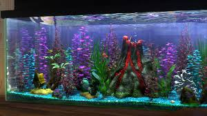 the 25 best finding nemo fish tank ideas on fish tank