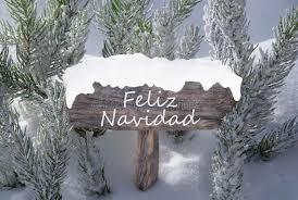 sign snow fir tree feliz navidad means merry stock image