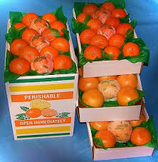 fruit of the month fruit of the month 2 month plan from the orange shop in florida