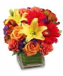 blooms flowers bright before your flower arrangement in tuscaloosa al