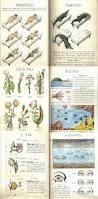 12 best codex siraphinianus images on pinterest codex