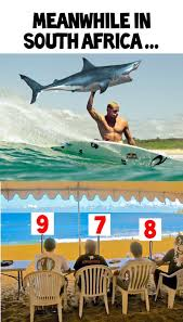 Shark Attack Meme - mick fanning shark attack internet adds punchy humour to surfer s