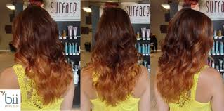 Chestnut Hair Color Pictures Auburn Hair 27 Free Hair Color Pictures