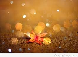 Tumblr Autumn quotes and sayings with wallpapers hd
