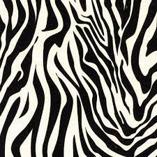 zebra print wrapping paper 116 best crafts images on diy crafts and jewelry
