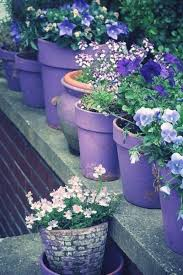 348 best outdoor flower container ideas images on pinterest pots