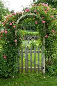 1466 best rose garden designs images on pinterest flowers