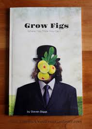 grow figs where you think you can u0027t u2014 book review stella otto