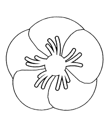 remembrance day poppy clipart free to use clip art resource