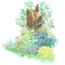 tropical look garden plan