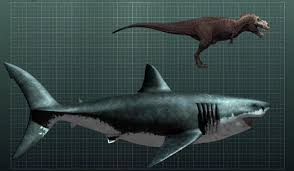 biggest megalodon shark megalodon could this giant shark still be alive bizarbin com