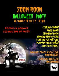 halloween party at the u201cdoom u201d room zoom room dog training