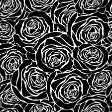 imagenes blancas en fondo negro rosas blancas sobre fondo negro archivo imágenes vectoriales