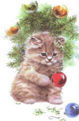 dog christmas cards cat christmas cards dog holiday cards kitty