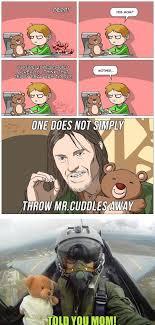 Meme Teddy Bear - teddy bear