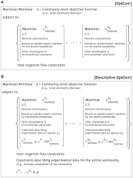 optcom a multi level optimization framework for the metabolic