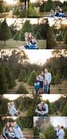 best 25 christmas portraits ideas on pinterest christmas