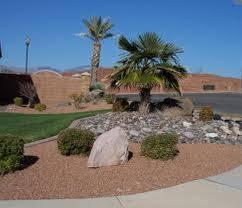 desert landscaping front yard inspiring landscape design and
