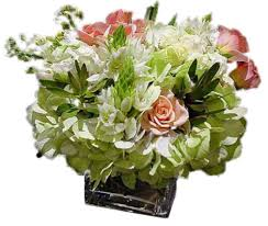 free flower delivery san francisco flower delivery rovetti flowers