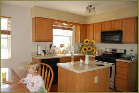 metal kitchen cabinets home depot best home furniture decoration