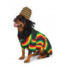 pet costume halloween big dog rasta dog costume with same day shipping baxterboo
