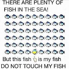 Fish In The Sea Meme - there are plenty of fish in the sea but this is my fish do not