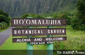 Botanical Gardens Highland Park Ho Omaluhia Botanical Garden Oahu