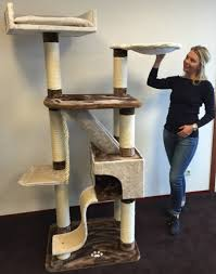 Unique Cat Furniture Rhrquality Cat Tree Kilimandjaro Plus Brown Cream Rhrquality Com