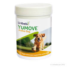 best joint supplement lintbells yumove active dog 240 tablets joint supplement for dogs