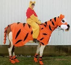 Winnie Pooh Halloween Costume 108 Horse Rider Costumes Images Costume