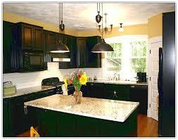 Diy Black Kitchen Cabinets Diy Painted Kitchen Cabinets Best Way To Paint Kitchen Cabinets