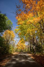 Wisconsin nature activities images 46 best fall in wisconsin activities images jpg
