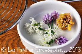 fleurs de ciboulette en cuisine tempuras de fleurs de ciboulette et d ail des ours à l orange et au