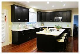 Zen Kitchen Cabinets Lakecountrykeyscom - Kitchen cabinets maryland