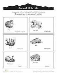 animal habitats worksheets education com
