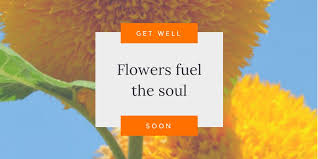 houston flower delivery try our houston flower delivery for all of your well wishes