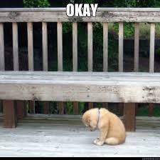 Sad Okay Meme - okay sad puppy quickmeme