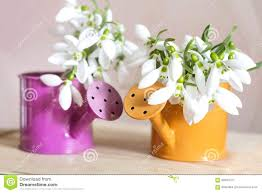 Bud Vase Arrangements Small Square Vases With Flowers Bud Vase Flower Arrangement 27053