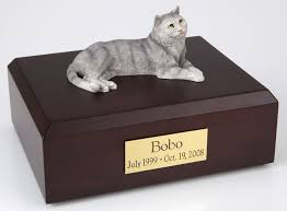 cat urn tabby cat cremation figurine urn w wooden storage box